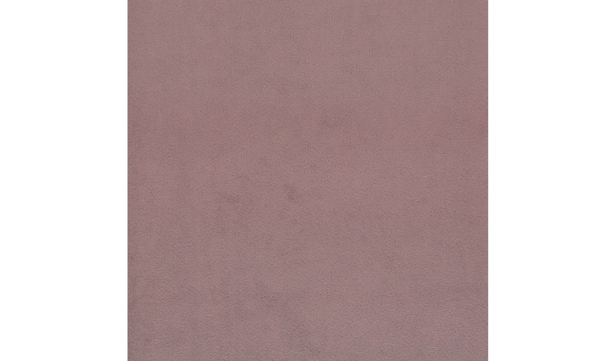 SCOT Hyacinth-07