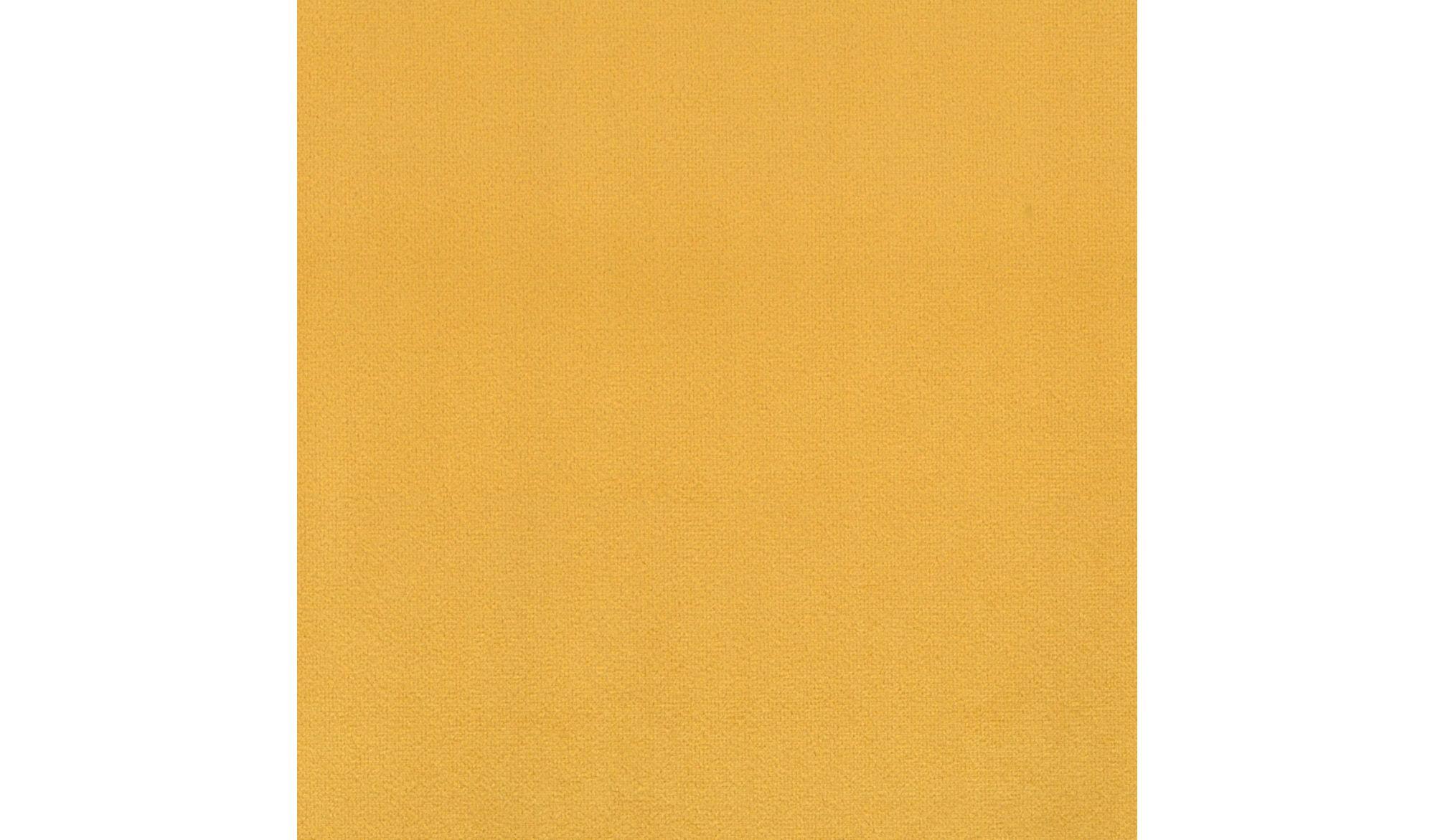SCOT Sunflower-14